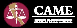 CAMEBC Retina Logo